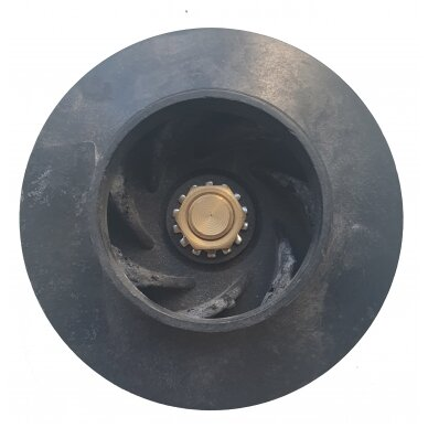 Sparnuotė hidro 11cm